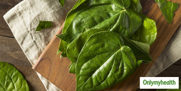 Did You Know That Chewing Paan Leaves Can Be Beneficial? Let's Find Out How