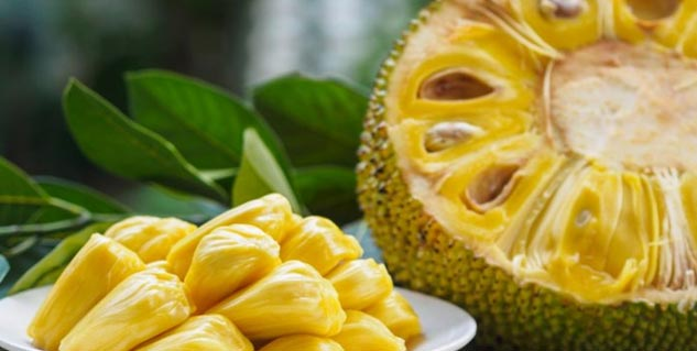 Green Jackfruit Flour Health Benefits: Know-Why Is It A Good Substitute For Whole Wheat Flour