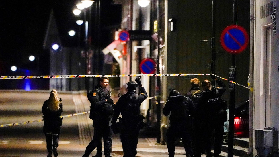 Bow and arrow attack kills 5, injures 2 people in Norway, terrorism not ruled out (PHOTOS)